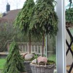 DIY – Lav dit eget grantræ