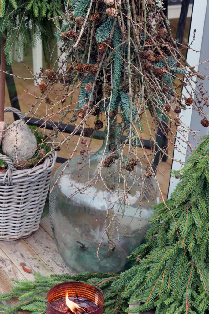 Ulemper, fordele og specielle juletræer.