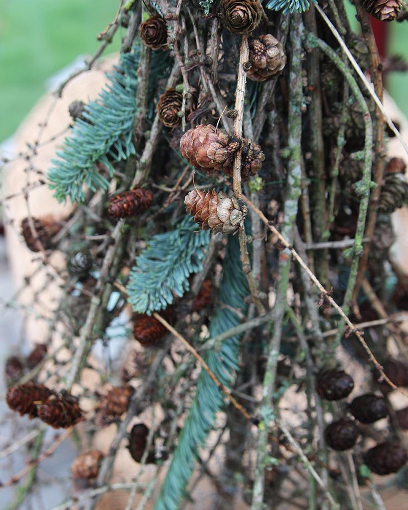 DIY grantræ